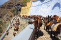Donkey ride down to the old port of Fira town, Santorini island
